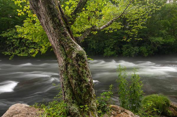Nantahala Photograph - Nantahala River by Derek Thornton