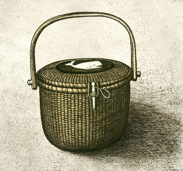 Shadows Drawing - Nantucket Basket by Charles Harden