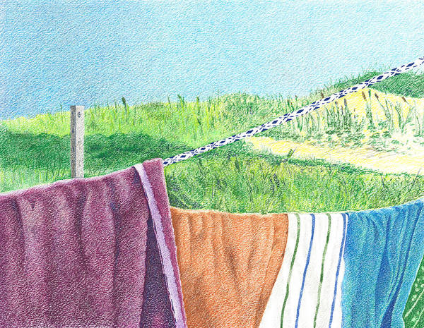 Beach Grass Drawing - Nantucket Clothesline by Alyson Therrien