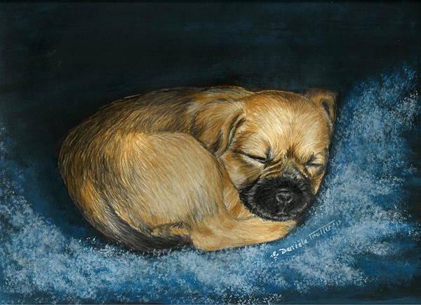 Border Mixed Media - Nap Puppy by Daniele Trottier