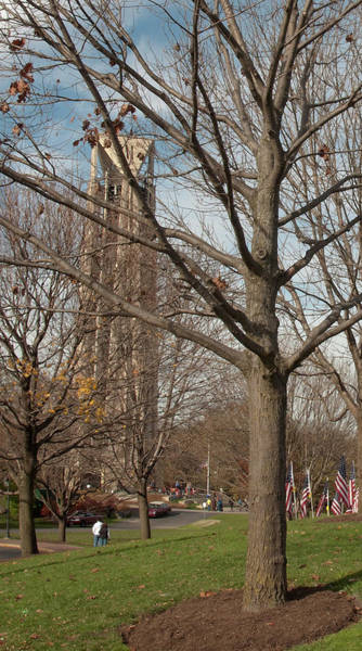 Photograph - 1 Of 6 Naperville Healing Field Of Honor At Rotary Hill by Michael Bessler