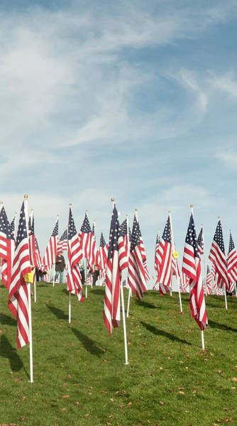 Photograph - 4 Of 6 Naperville Healing Field Of Honor At Rotary Hill by Michael Bessler