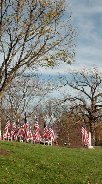 Photograph - 6 Of 6 Naperville Healing Field Of Honor At Rotary Hill by Michael Bessler