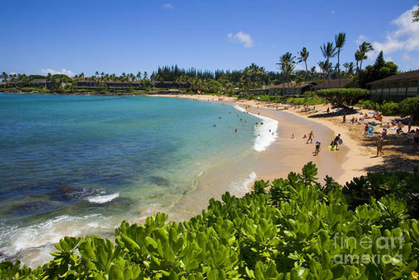 Napili Bay Photograph - Napili Bay With Visitors by Ron Dahlquist - Printscapes