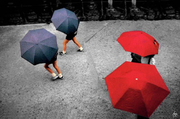 Photograph - Nara Umbrellas Select by Wayne King