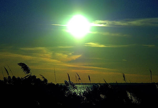 Photograph - Narrow Bay Sunset by Newwwman