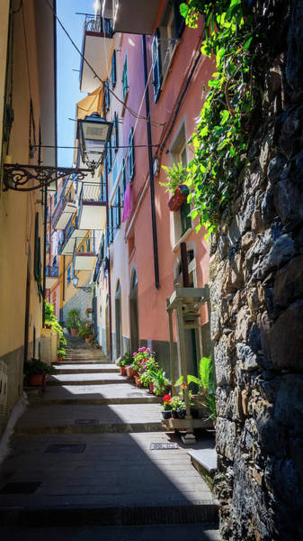 Photograph - Narrow Street In Cinque Terre Italy by Joan Carroll