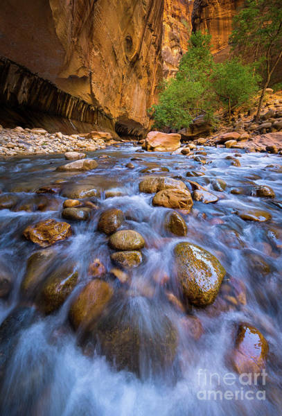 Wall Art - Photograph - Narrows Cascades by Inge Johnsson