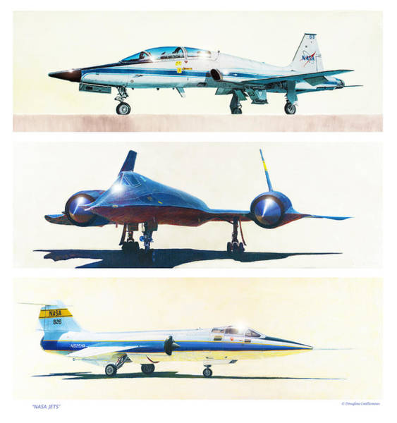 Painting - Nasa Jets by Douglas Castleman