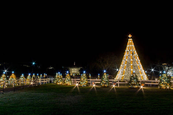 Photograph - National Christmas Tree by SR Green