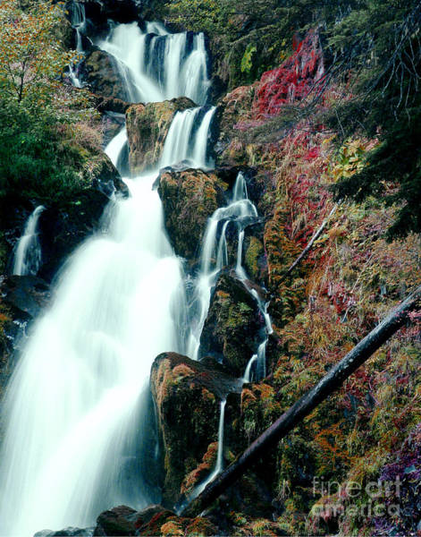 Wall Art - Photograph - National Creek Falls 07 by Peter Piatt