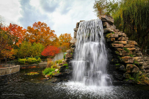 Photograph - National Zoo Waterfall by Ross Henton