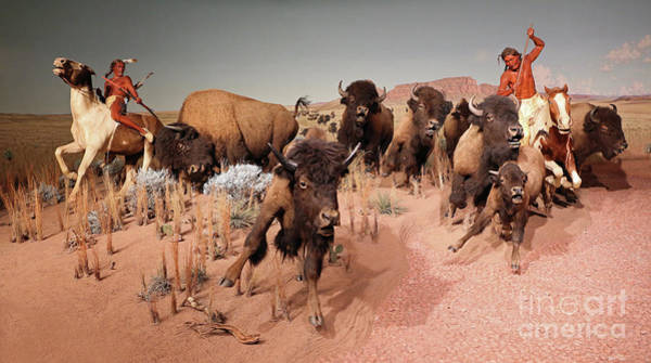 Photograph - Native American Bison Hunt  by Kevin McCarthy