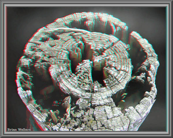 Anaglyph Photograph - Natural Art - Use Red-cyan 3d Glasses by Brian Wallace