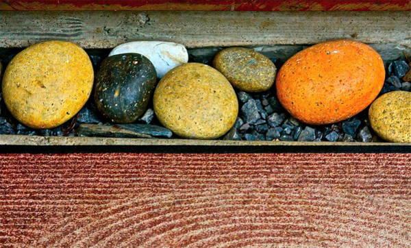 Steven Tyler Photograph - Natural Boundaries by Karon Melillo DeVega