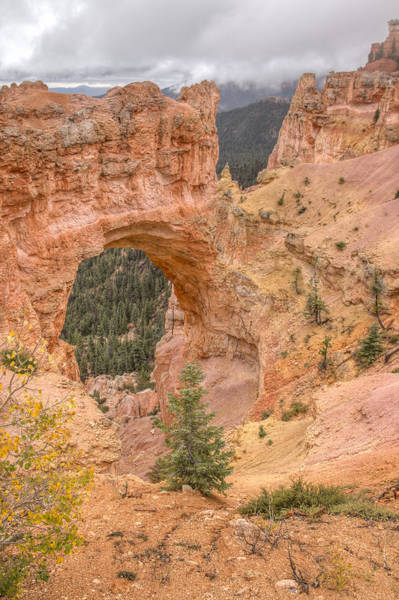 Clarion Photograph - Natural Bridge - Vertical by Kristina Rinell
