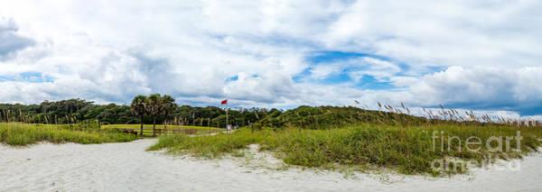Photograph - Natural Coastal Pruning by David Smith