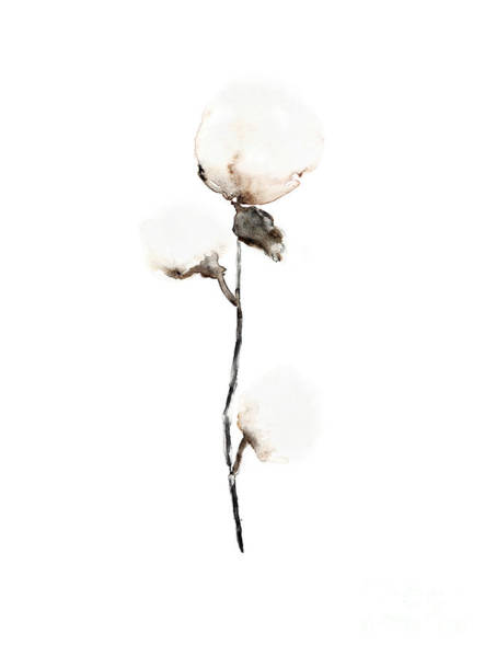 Cotton Painting - Natural Cotton Fine Art Print by Joanna Szmerdt