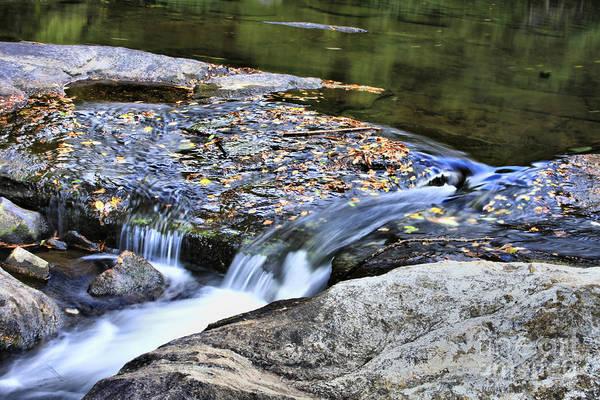 Photograph - Natural Flow by Deborah Benoit