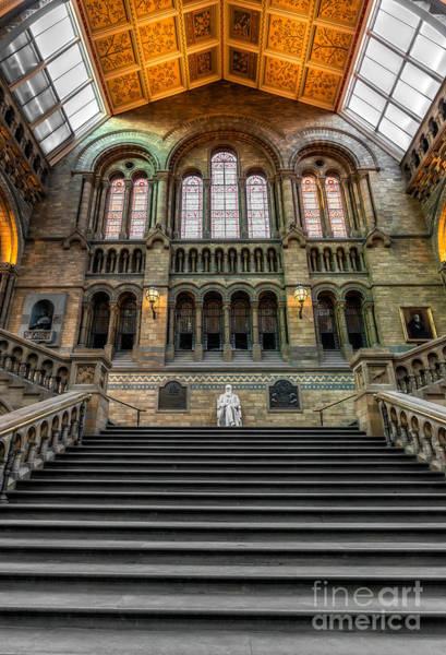 Photograph - Natural History Museum by Adrian Evans
