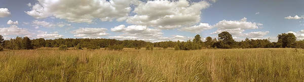 Natural Meadow Landscape Panorama. Art Print