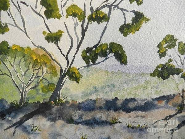 Wall Art - Painting - Natural Park A Shoalhaven by Pamela  Meredith
