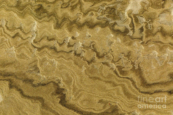 Photograph - Natural Sandpainting by Roger Monahan