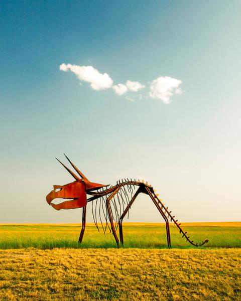 Dinosaurs Photograph - Natural Selection by Todd Klassy