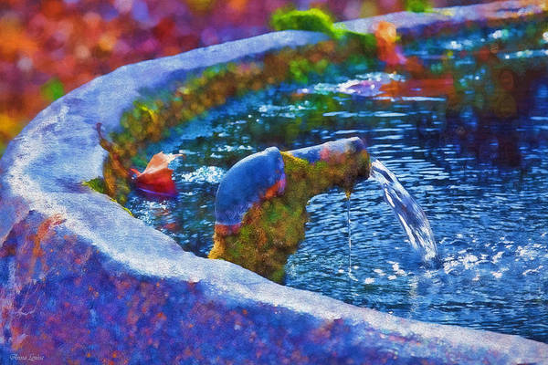 Photograph - Natural Spring Well by Anna Louise