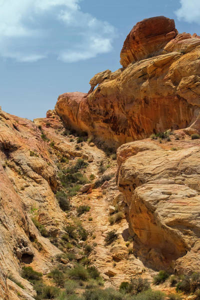 Wall Art - Photograph - Natural Staircase Valley Of Fire by Frank Wilson