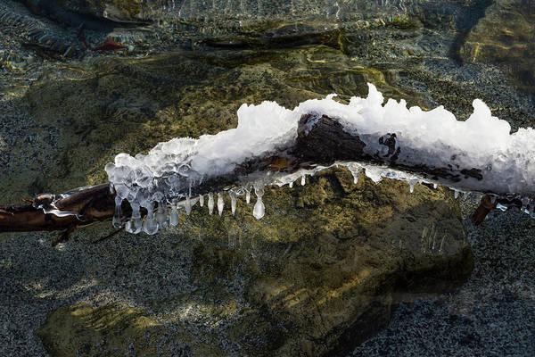 Photograph - Nature Artistic Hand - Sculpted Ice And Sun Sparkles by Georgia Mizuleva