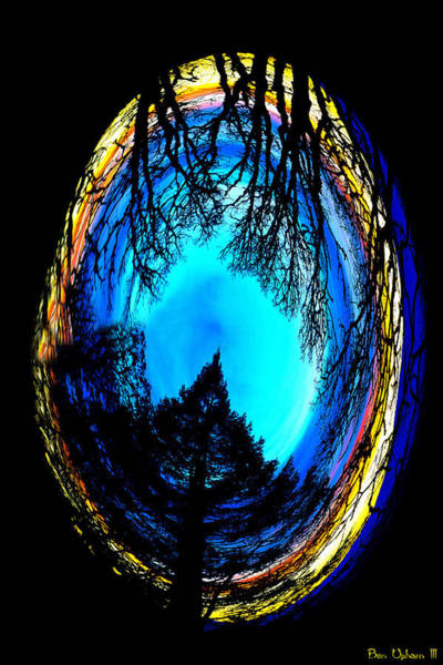 Photograph - Nature Egg by Ben Upham III