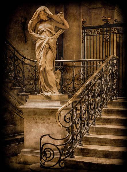 Photograph - Paris, France - Nature by Mark Forte