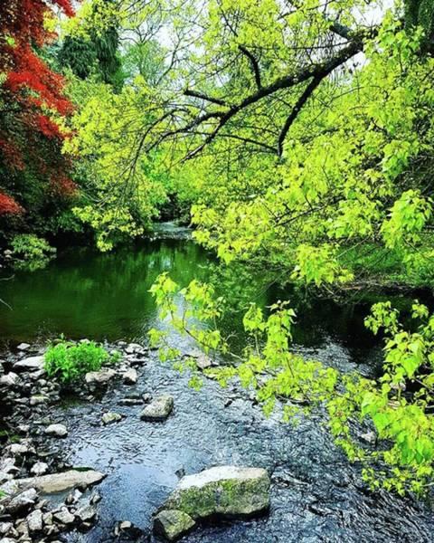 #nature #oldmill #stream #river Art Print
