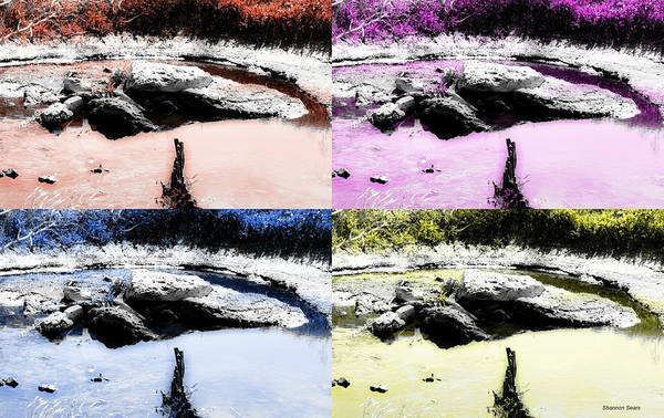 Prairie Home Digital Art - Nature Pop Art Aspect by Shannon Sears