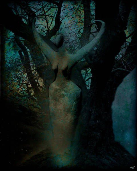 Digital Art - Nature Spirit by Chris Lord