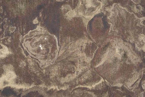 Three Seashells Photograph - Natures Amazing Abstracts - Three Shells On A Map by Georgia Mizuleva