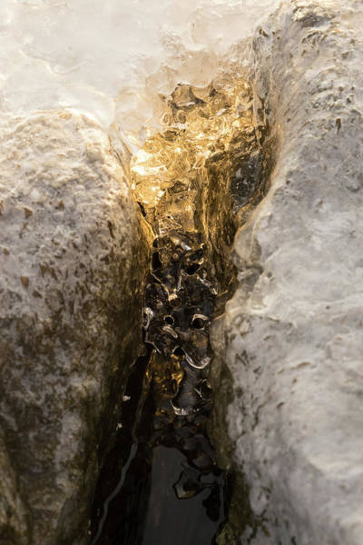Photograph - Natures Creativity - Golden Crevasse by Georgia Mizuleva