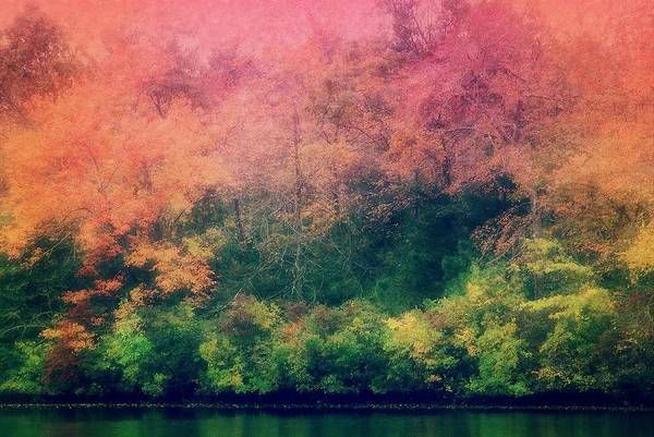 Photograph - Nature's Dreamscape by Angie Tirado