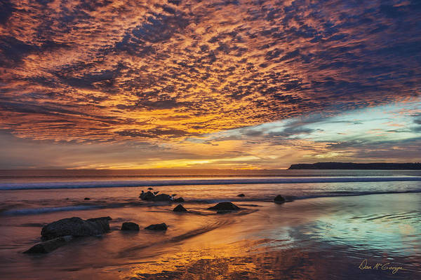 Coronado Photograph - Nature's Glory by Dan McGeorge