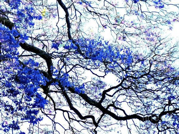 Twig Mixed Media - Natures Lines by Leanne Seymour