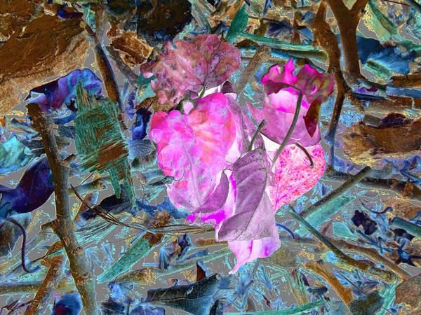 Nature's Love Art Print