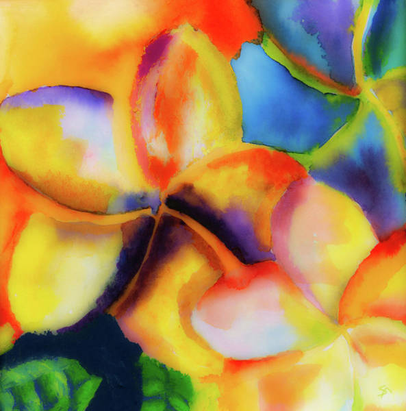 Wall Art - Painting - Nature's Pinwheels by Stephen Anderson