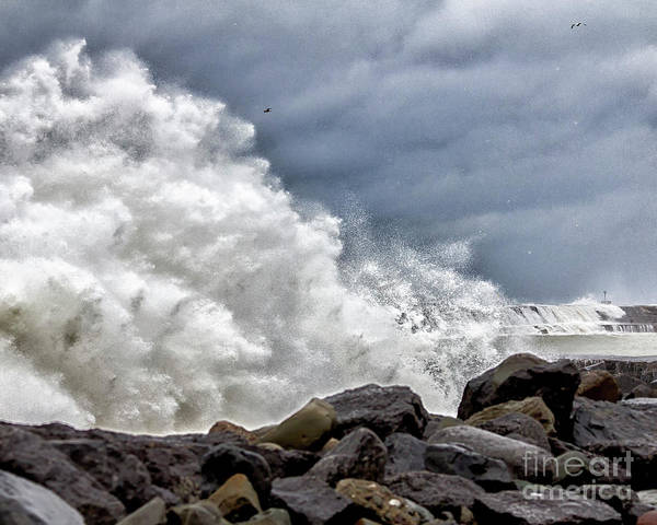 Photograph - Nature's Power by Rod Best