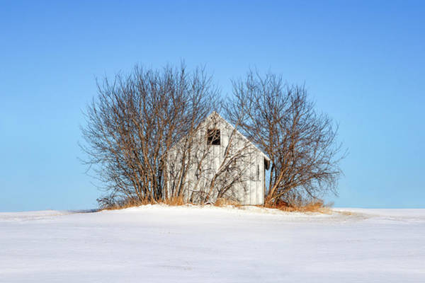 Photograph - Nature's Shed by Todd Klassy