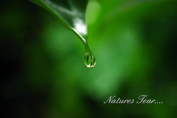 Natures Tear Art Print