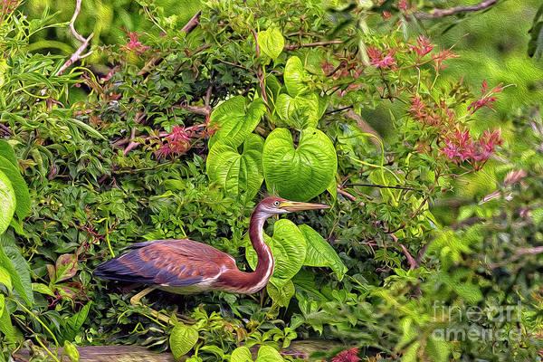 Heron Mixed Media - Natures Wildlife Paradise Painting by Bill And Deb Hayes
