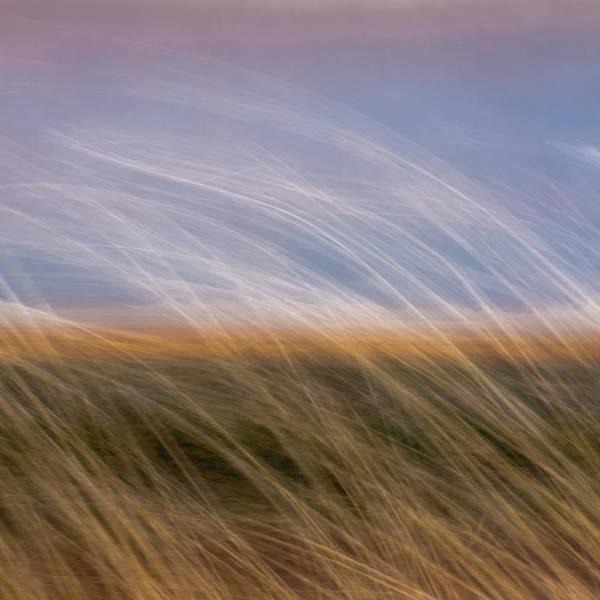 Photograph - Nauset Beach 2 by John Whitmarsh