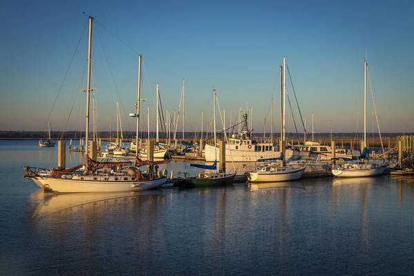 Photograph - Nautical Blue And Gold by Debra and Dave Vanderlaan