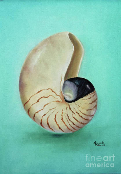 Wall Art - Painting - Nautilus Seashell by Gabriela Valencia